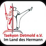 logo taekyon